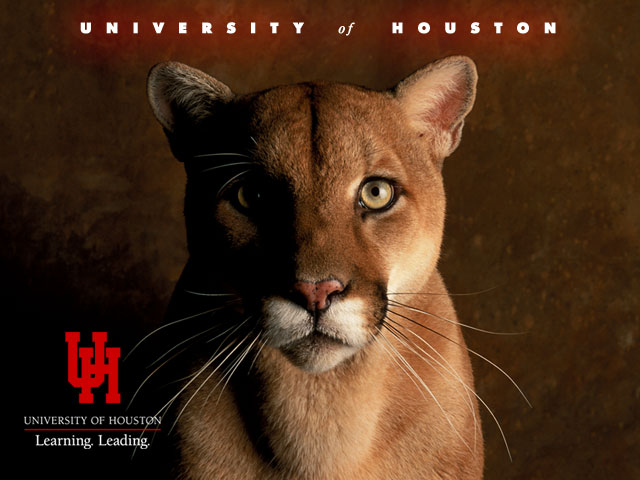 The University of Houston Mascot, Shasta the mountain lion with UH logo.